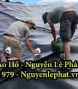 Bạt Lót Ao Hồ Chứa Nước Nuôi Cá Ốc Thuận An